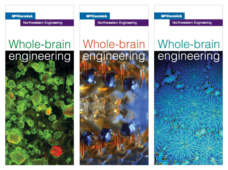 Whole-Brain Engineering concept banners
